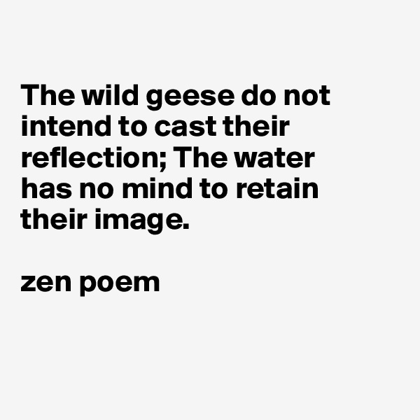 The wild geese do not intend to cast their reflection; The water  has no mind to retain  their image.  zen poem