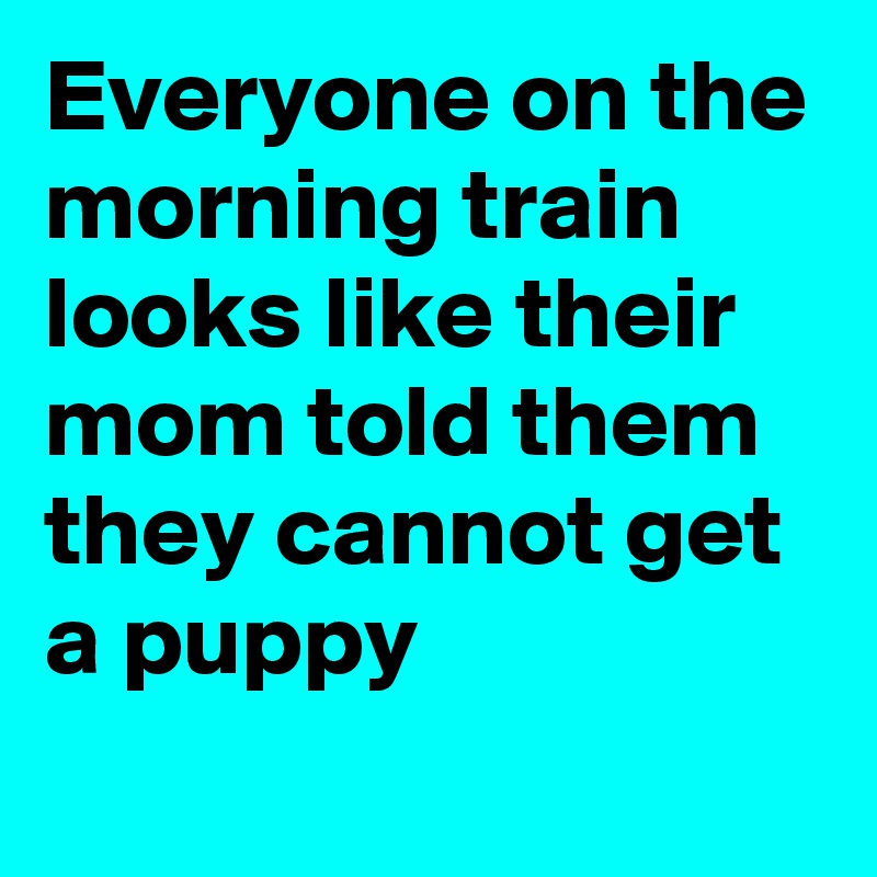 Everyone on the morning train looks like their mom told them they cannot get a puppy