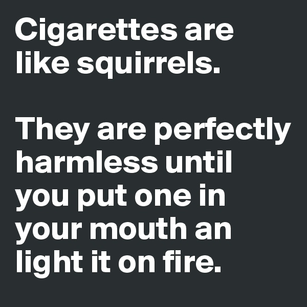 Cigarettes are like squirrels.  They are perfectly harmless until you put one in your mouth an light it on fire.