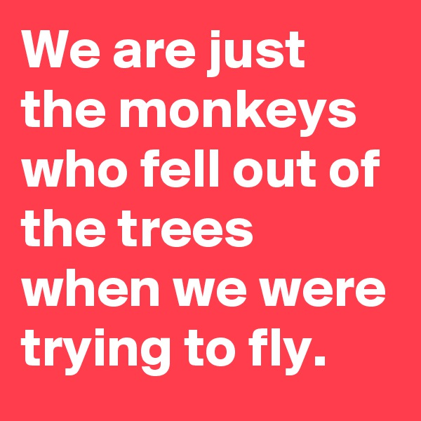 We are just the monkeys who fell out of the trees when we were trying to fly.