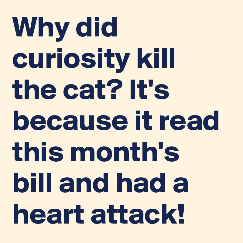 Why did curiosity kill the cat? It's because it read this month's bill and had a heart attack!