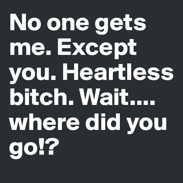 No one gets me. Except you. Heartless bitch. Wait.... where did you go!?