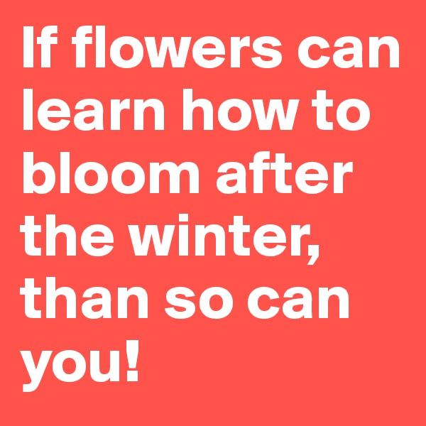 If flowers can learn how to bloom after the winter, than so can you!