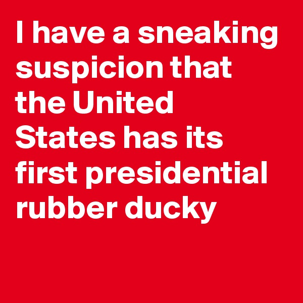 I have a sneaking suspicion that the United States has its first presidential rubber ducky