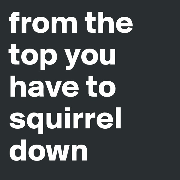 from the top you have to squirrel down