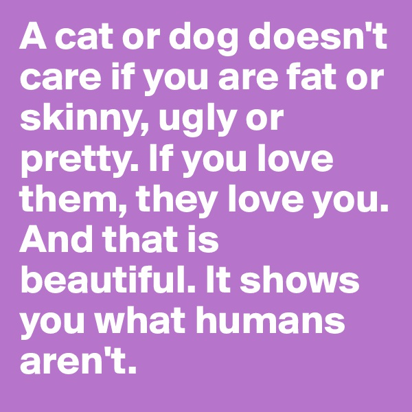A cat or dog doesn't care if you are fat or skinny, ugly or pretty. If you love them, they love you. And that is beautiful. It shows you what humans aren't.