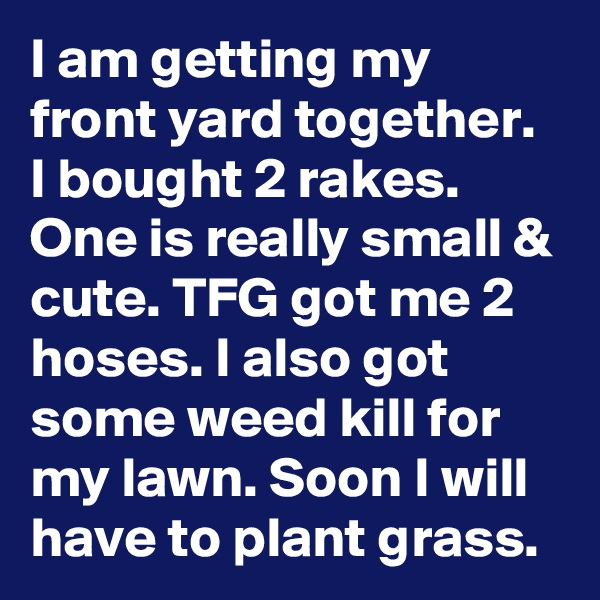 I am getting my front yard together. I bought 2 rakes. One is really small & cute. TFG got me 2 hoses. I also got some weed kill for my lawn. Soon I will have to plant grass.
