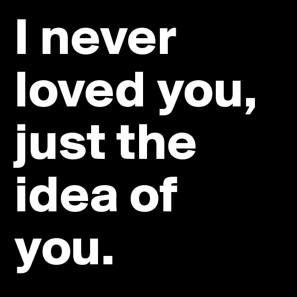 I never loved you, just the idea of you.