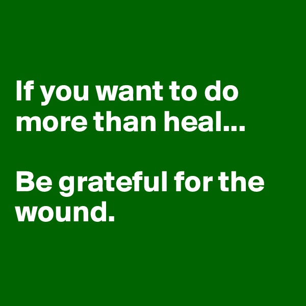 If you want to do more than heal...  Be grateful for the wound.