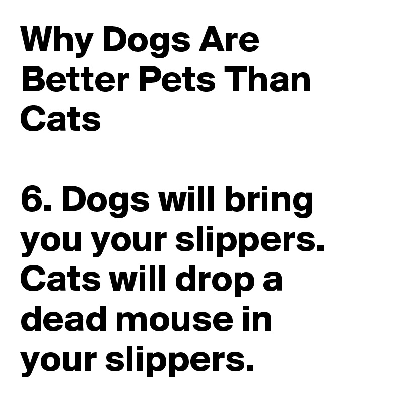 why are dogs the best pets essays You may get different answers depending on who you talk to when you ask why do dogs make such good companions it isn't as if you couldn't get another pet that you could love other pets can be much easier to take care of let's use a goldfish for example they take very little care.