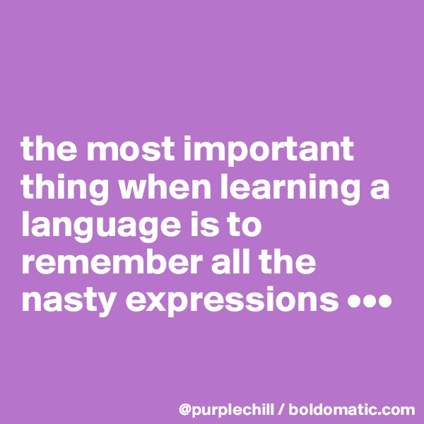 the most important thing when learning a language is to remember all the nasty expressions •••