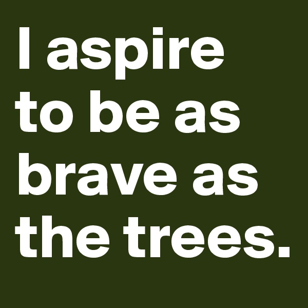 I aspire to be as brave as the trees.