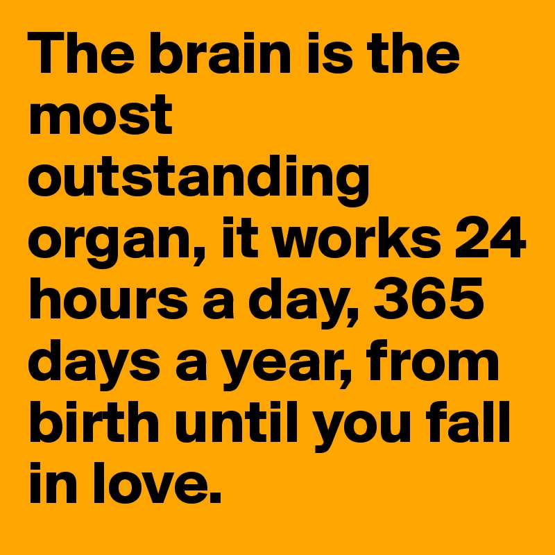 The brain is the most outstanding organ, it works 24 hours a day, 365 days a year, from birth until you fall in love.