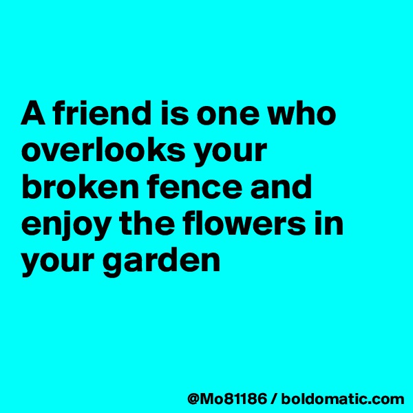 A friend is one who overlooks your broken fence and enjoy the flowers in your garden