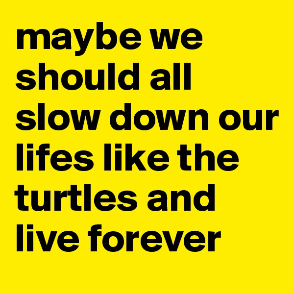 maybe we should all slow down our lifes like the turtles and live forever