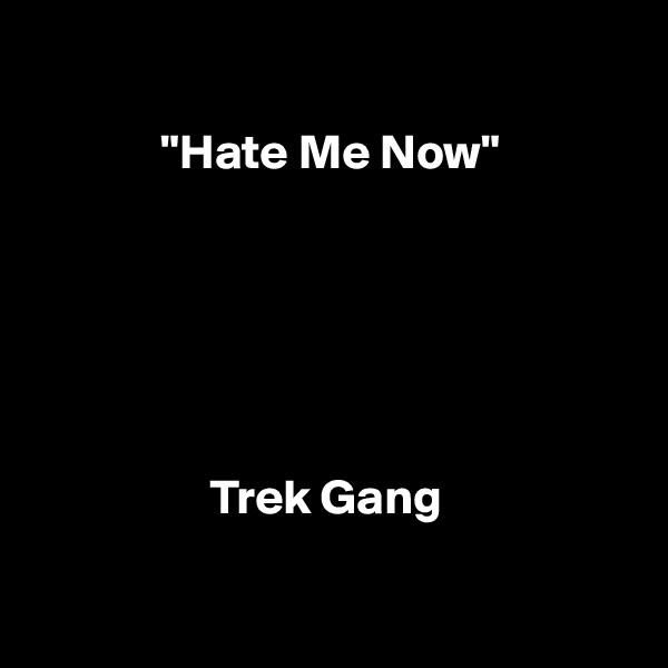"""""""Hate Me Now""""                          Trek Gang"""