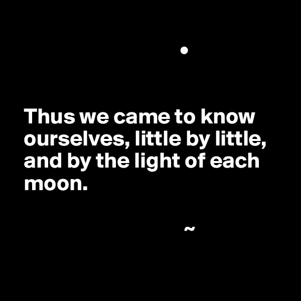 •     Thus we came to know           ourselves, little by little,       and by the light of each    moon.                                        ~