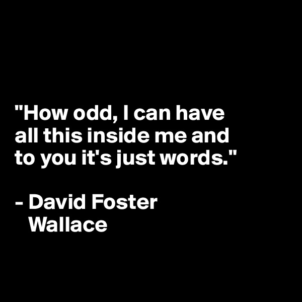 """""""How odd, I can have  all this inside me and  to you it's just words.""""  - David Foster    Wallace"""
