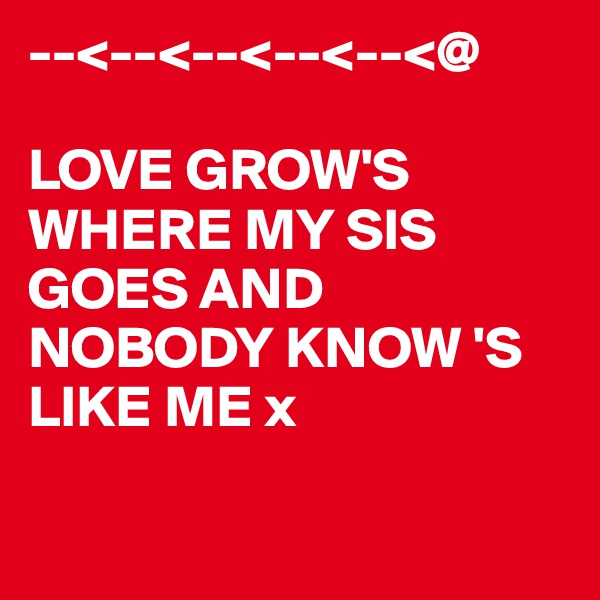 --<--<--<--<--<@  LOVE GROW'S WHERE MY SIS GOES AND NOBODY KNOW 'S LIKE ME x