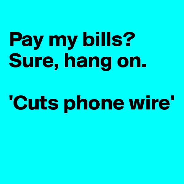 Pay my bills?  Sure, hang on.  'Cuts phone wire'