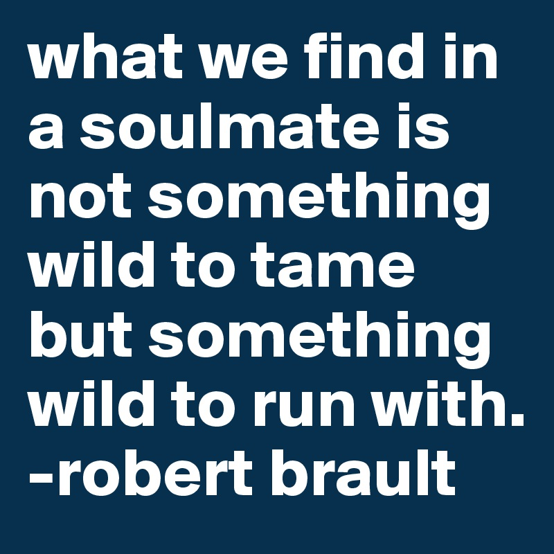what we find in a soulmate is not something wild to tame but something wild to run with.  -robert brault