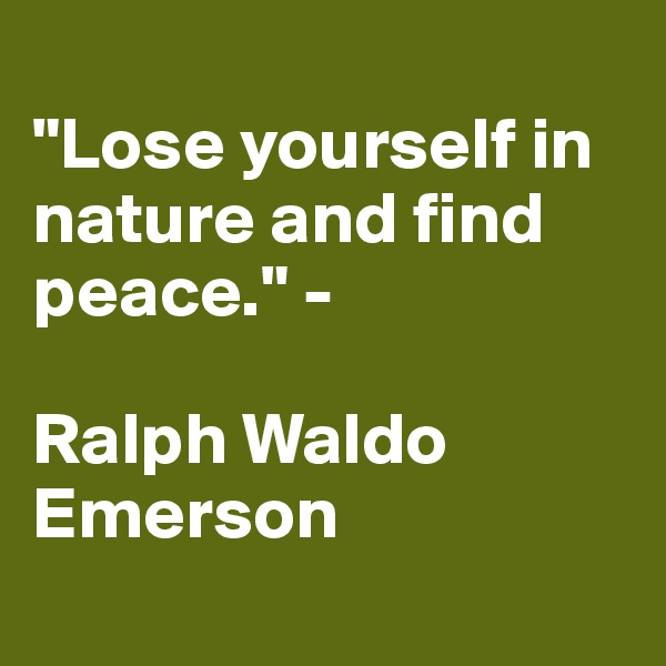 """""""Lose yourself in nature and find peace."""" -   Ralph Waldo Emerson"""