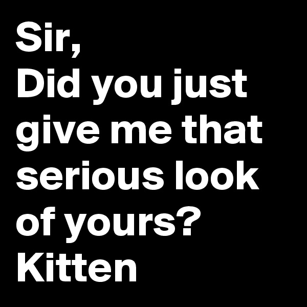 Sir, Did you just give me that serious look of yours? Kitten