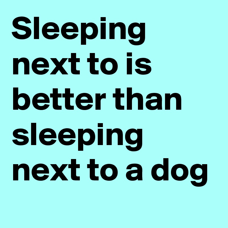 Sleeping next to is better than sleeping next to a dog