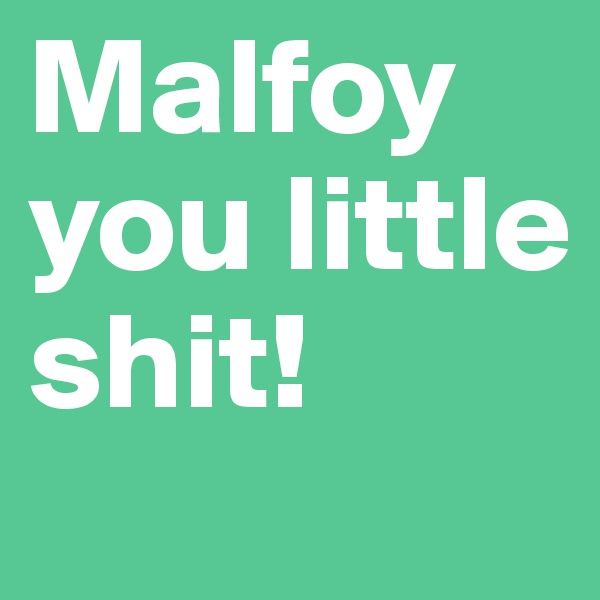 Malfoy you little shit!