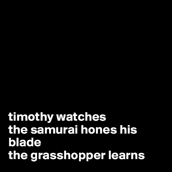 timothy watches the samurai hones his blade the grasshopper learns