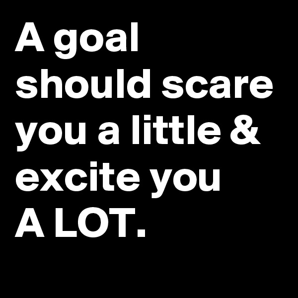 A goal should scare you a little & excite you  A LOT.