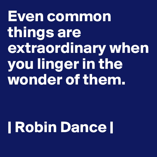 Even common things are extraordinary when you linger in the wonder of them.    | Robin Dance |