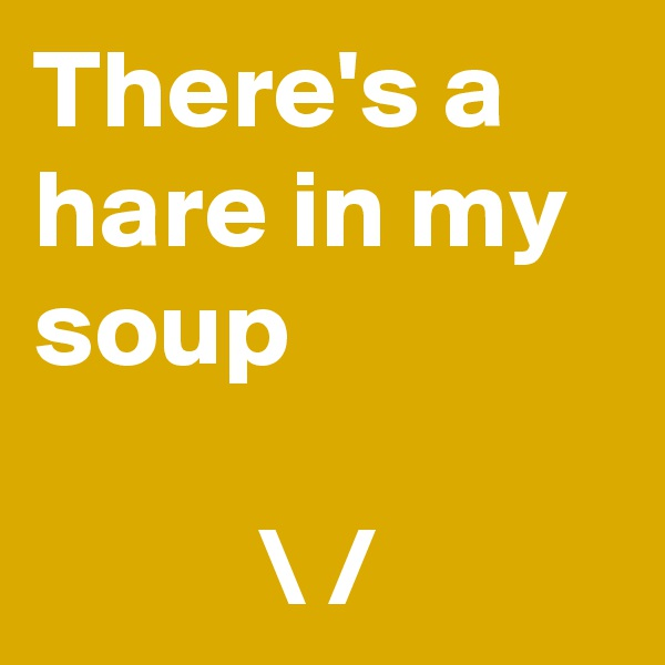 There's a hare in my soup                      \ /