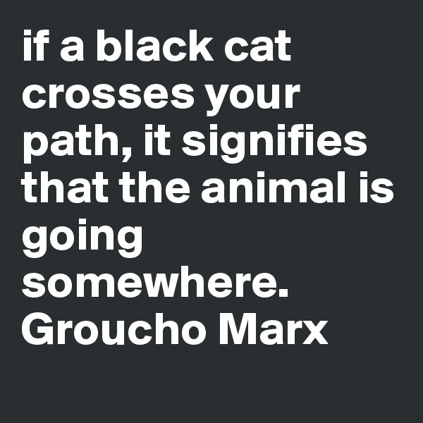 if a black cat crosses your path, it signifies that the animal is going somewhere. Groucho Marx