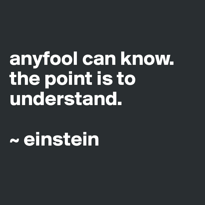 anyfool can know. the point is to understand.   ~ einstein