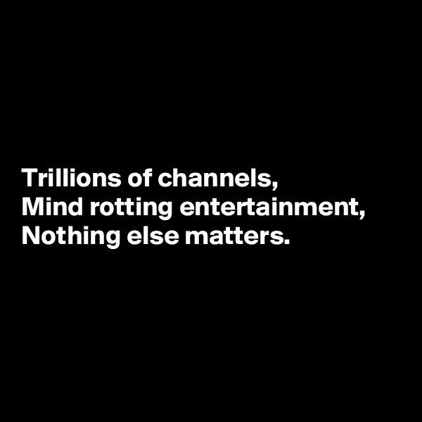 Trillions of channels,  Mind rotting entertainment,  Nothing else matters.