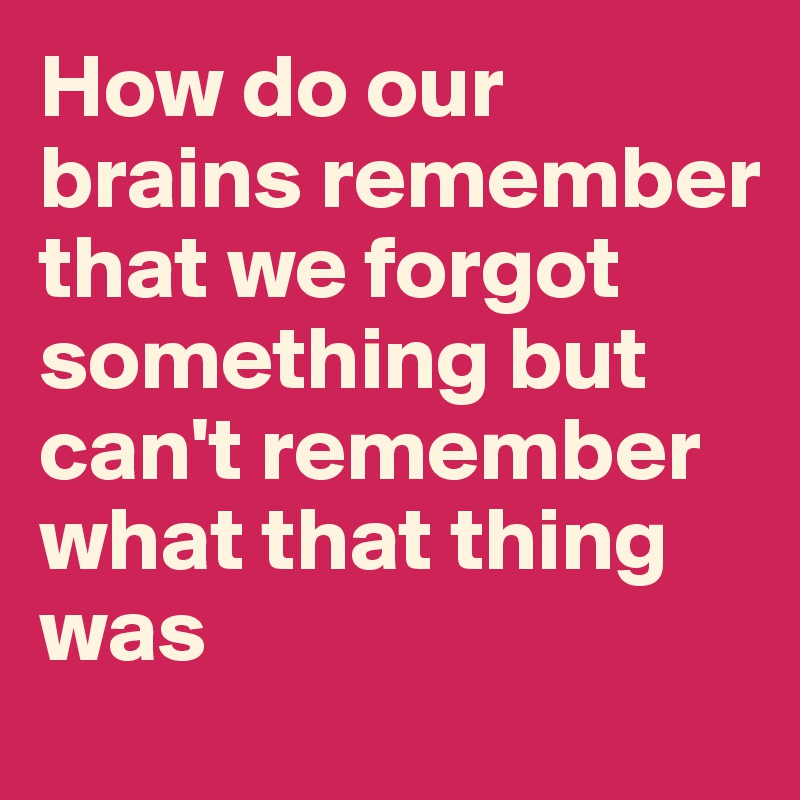 How do our brains remember that we forgot something but can't remember what that thing was