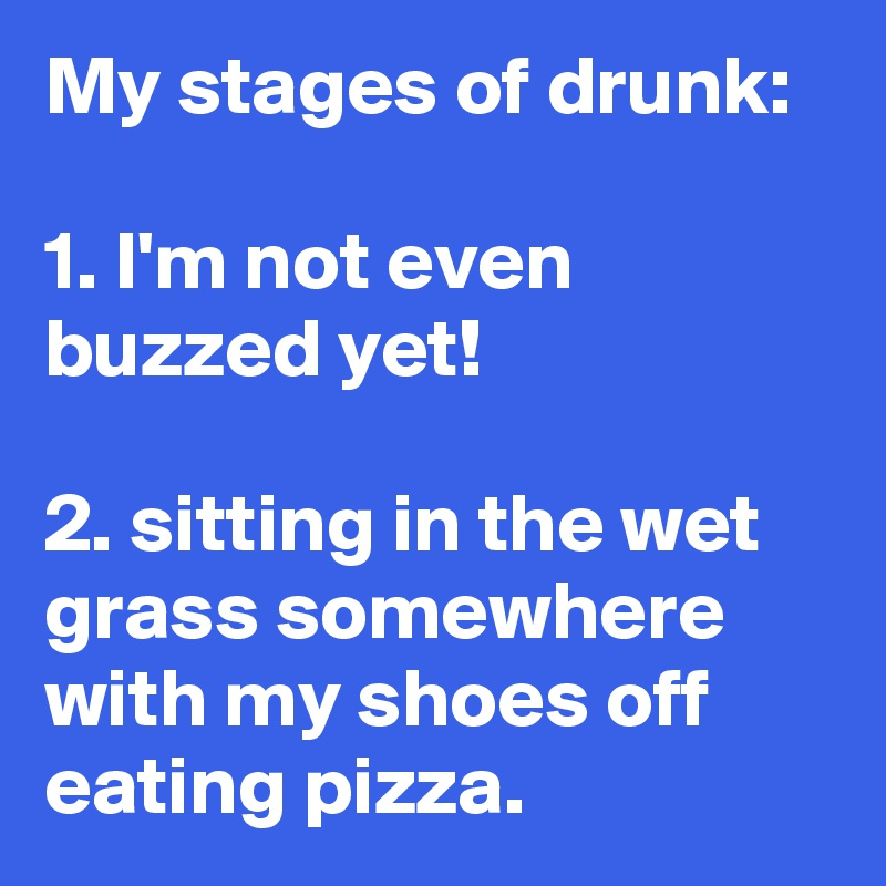 My stages of drunk:   1. I'm not even buzzed yet!   2. sitting in the wet grass somewhere with my shoes off eating pizza.