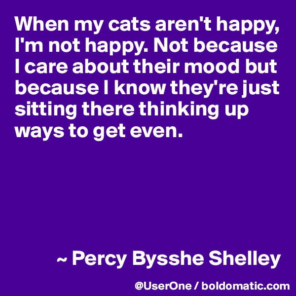When my cats aren't happy, I'm not happy. Not because I care about their mood but because I know they're just sitting there thinking up ways to get even.                ~ Percy Bysshe Shelley