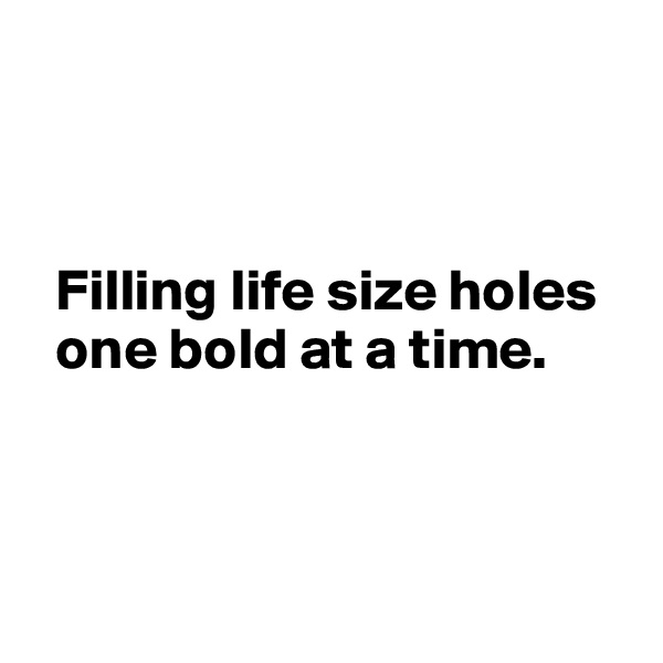 Filling life size holes     one bold at a time.