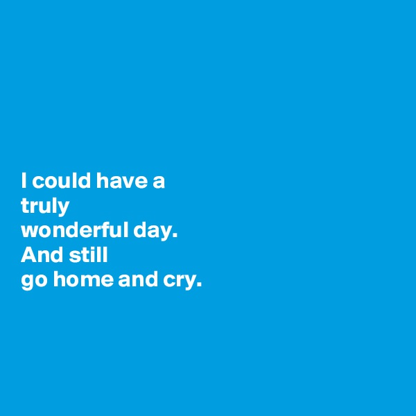 I could have a  truly wonderful day.  And still  go home and cry.