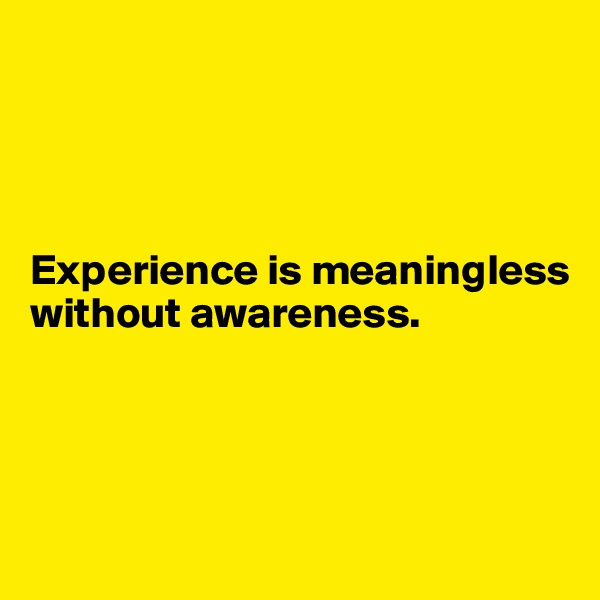 Experience is meaningless without awareness.