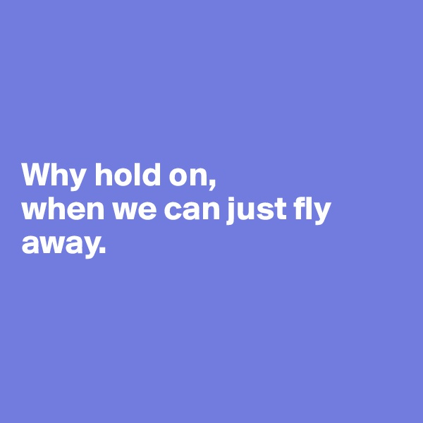 Why hold on,  when we can just fly away.
