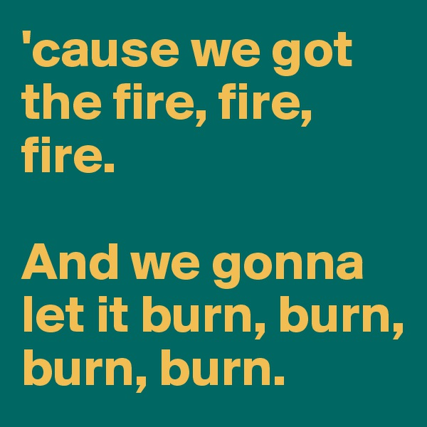 'cause we got the fire, fire, fire.   And we gonna let it burn, burn, burn, burn.