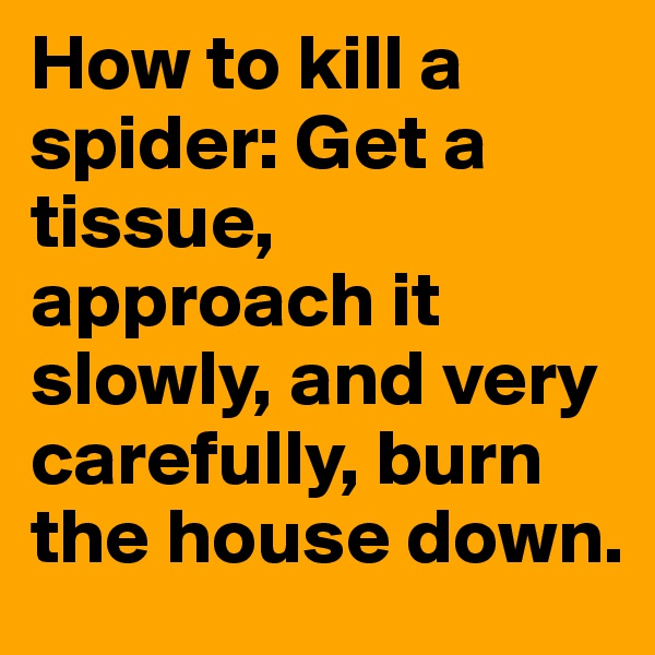 How to kill a spider: Get a tissue, approach it slowly, and very carefully, burn the house down.