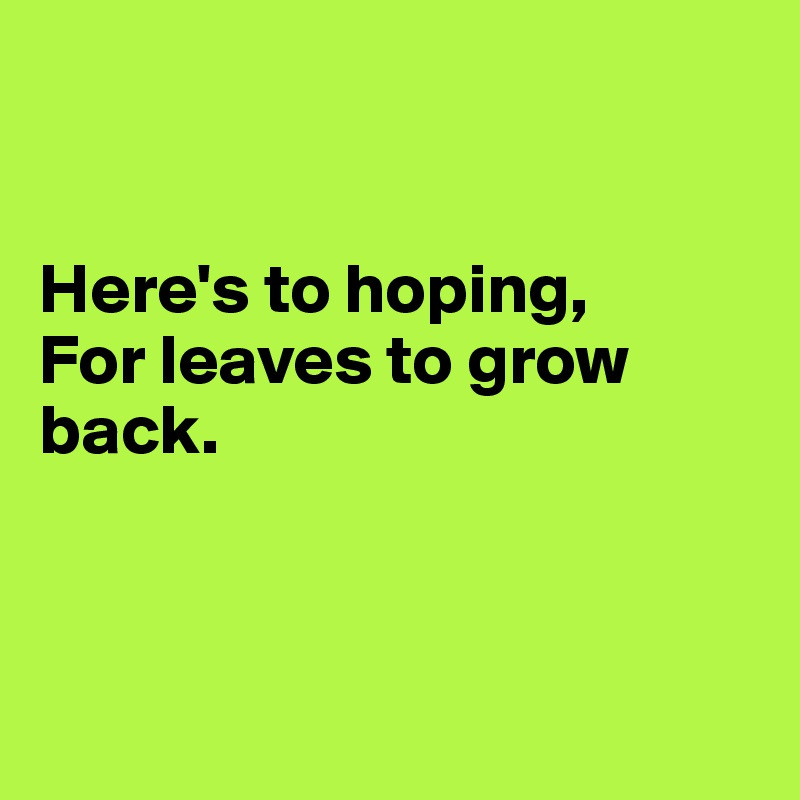 Here's to hoping, For leaves to grow back.