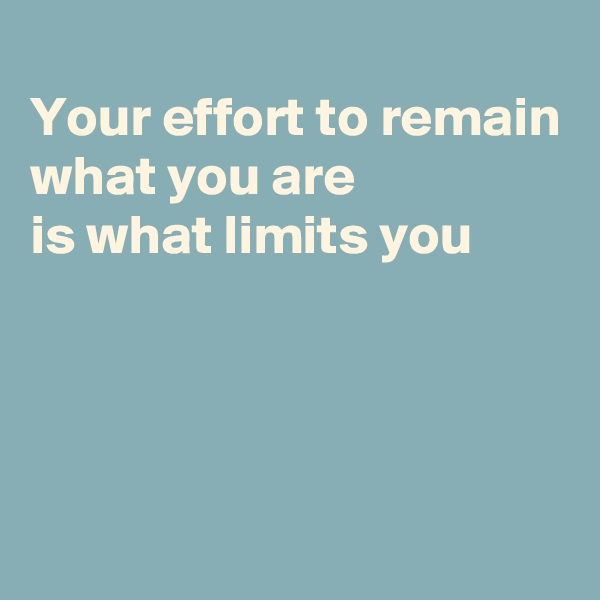 Your effort to remain what you are  is what limits you