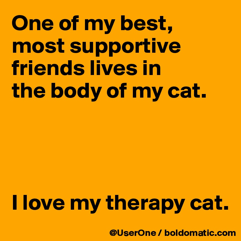 One of my best, most supportive friends lives in the body of my cat.     I love my therapy cat.