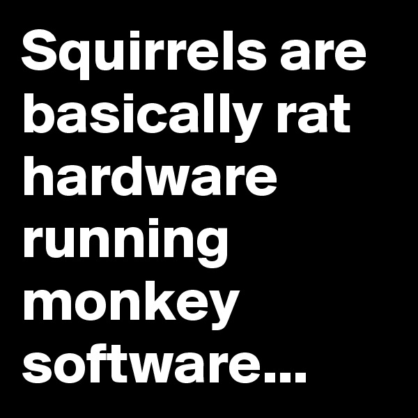 Squirrels are basically rat hardware running monkey software...