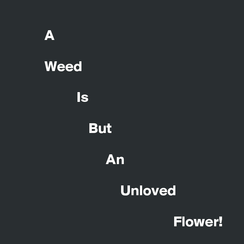 A             Weed                        Is                            But                                  An                                       Unloved                                                         Flower!